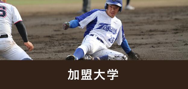 関 甲 新 学生 野球 連盟 一 球 速報